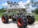 Swamp Buggies of Florida